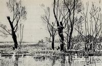 Ранней весной (В. Звонцов, 1962 г.)